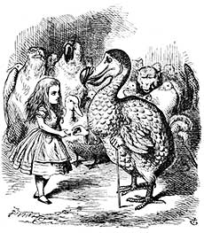 Alice Meeting the Dodo