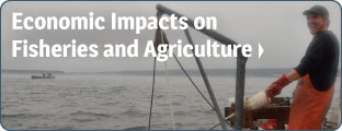 Economic Impacts on Fisheries and Agriculture