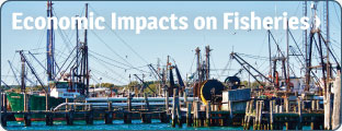 Economic Impacts on Fisheries