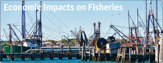 Fisheries Impacts