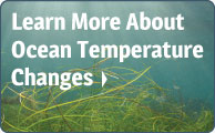 More About Ocean Temperature Changes