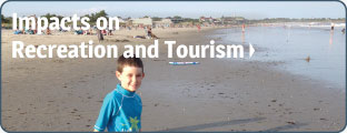 Impacts on Recreation and Tourism